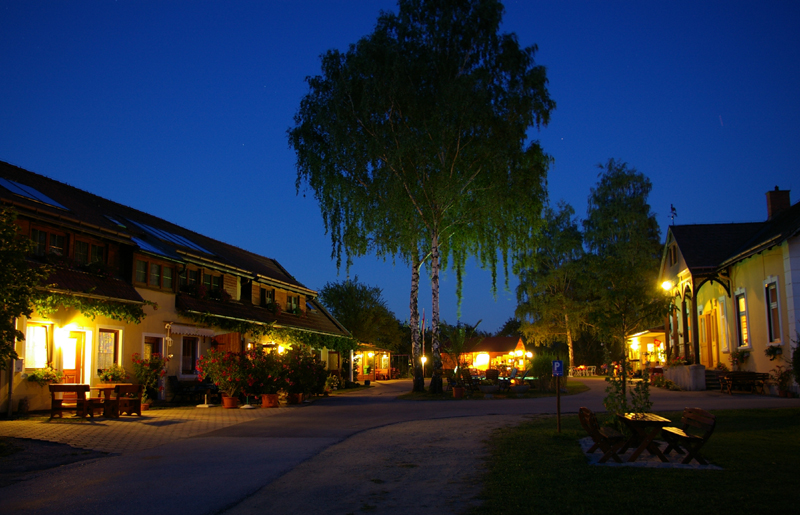 Beste Spielothek in Bobenheim-Roxheim finden